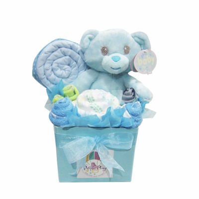 small baby boy hamper teddy bear
