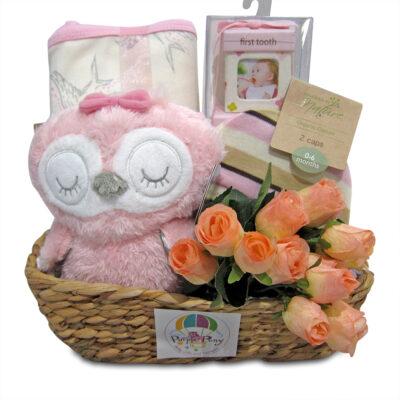 Owl organic Cotton baby girl hamper