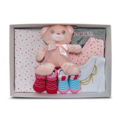teddy bear basic baby girl gift box